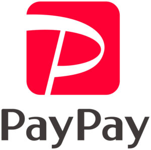 PayPay Instructions